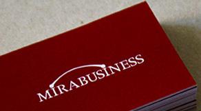 Mirabusiness - Imagem Corporativa